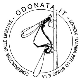 Odonata.it logo